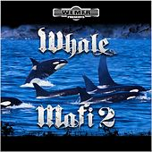 Whale Mafi 2 by Rich The Factor