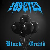 Black Orchid by The 69 Eyes