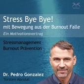 Stress Bye Bye! Mit Bewegung aus der Burnout Falle - Stressmanagement & Burn-out Prävention - ein Motivationsvortrag von Various Artists