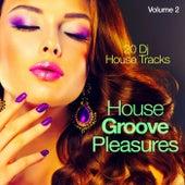 House Groove Pleasures, Vol. 2 (20 DJ House Tracks) by Various Artists