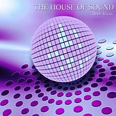 The House of Sound, Vol. 2 (20 DJ Tracks) by Various Artists