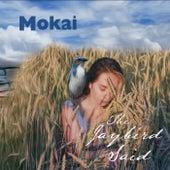 The Jaybird Said de Mokai