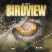Birdview by Lil Poppa