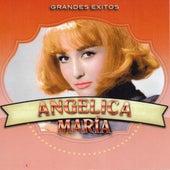 Grandes Exitos by Angelica Maria