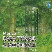Musica para Tomar & Recordar, Vol. 3 by Various Artists