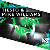 I Want You de Tiësto