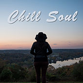 Chill Soul von Various Artists