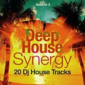 Deep-House Synergy, Vol. 3 (20 DJ House Tracks) von Various Artists