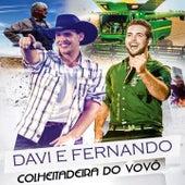 Colheitadeira do Vovô von Davi & Fernando