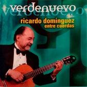 Verdenuevo (entre cuerdas) von Ricardo Dominguez