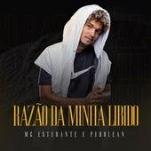 Razão da Minha Libido by MC Estudante
