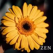 Zen by Sereno