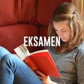 Eksamen - Rolig musik til opgaveskrivning og lektier by Various Artists