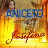 Josefina de Aniceto Molina