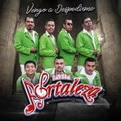 Vengo a Despedirme by Banda Fortaleza de Zirándaro