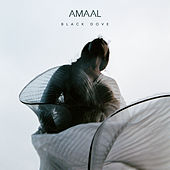 Black Dove by Amaal