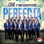 Perfecta de Banda Los Recoditos