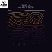Sanity (feat. Andrea Turk) by Random