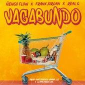 Vagabundo by Frank Jordan
