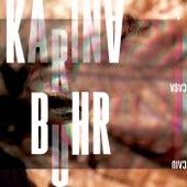 A Casa Caiu de Karina Buhr