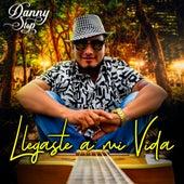 Llegaste a Mi Vida by Danny  Stop