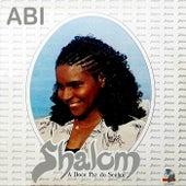 Shalom: A Doce Paz do Senhor by Abi