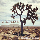 Wildlife by Jonathan Foster