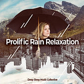 Prolific Rain Relaxation by Various Artists