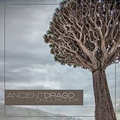 Ancient Drago Chill Mood #1 di Various Artists