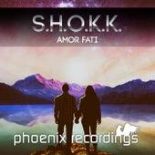 Amor Fati by Shokk
