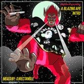 Blazing Ape Intro de DJ Rectangle