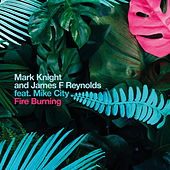 Fire Burning by Mark Knight
