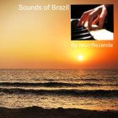 Sounds Of Brazil von Nico Rezende