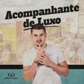 Acompanhante de Luxo von Gabriel Gava