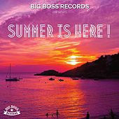 Summer is Here! by Various Artists