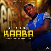 Kaaba de Virus