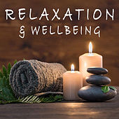 Relaxation & Wellbeing de Various Artists