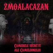 Camerele secrete ale cameleonului de Zmoalacazan