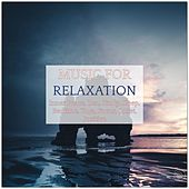 Music for Relaxation, Inner Peace, Zen, Study, Sleep, Bedtime, Yoga, Focus, Quiet, Positive by Various Artists