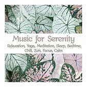 Music for Serenity: Relaxation, Yoga, Meditation, Sleep, Bedtime, Chill, Zen, Focus, Calm de Various Artists