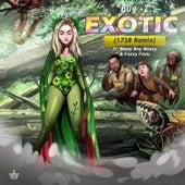 Exotic (1738 Remix) de Bugz