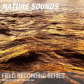Nature Recordings - Peaceful sea by Nature Sounds (1)