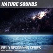 Nature Recordings - Quiet ocean noise by Nature Sounds (1)