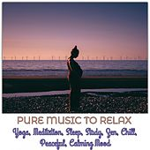 Pure Music to Relax, Yoga, Meditation, Sleep, Study, Zen, Chill, Peaceful, Calming Mood de Various Artists