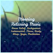 Morning Relaxing Music: Stress Relief, Background, Instrumental, Piano, Study, Sleep, Yoga, Meditation de Various Artists