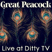 Live at DittyTV by Great Peacock