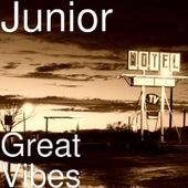 Great Vibes de Junior
