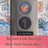 New York House Music Vol.1 by Various Artists