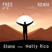 Free, Pt. 2 (Remix) [feat. Natty Rico] de Etana