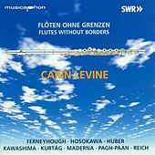Flutes Without Borders von Carin Levine